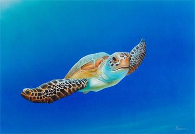 Sea Turtle in Flight-small