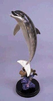 Dolphin Dream