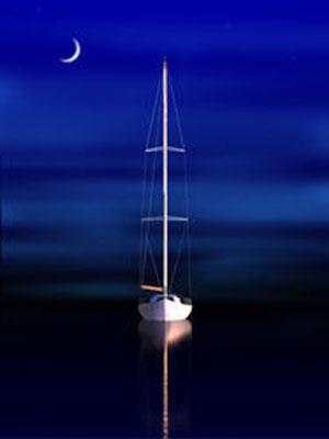 Steve Harlan - Midnight - Wyland Gallery Sarasota